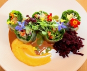 Vegetarian spring rolls with carrot hummus and beetroot salad